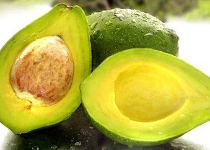 Os-benefícios-do-abacate